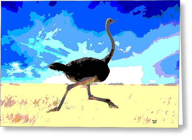Ostrich Flightless Bird Greeting Card