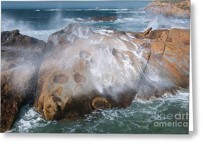 Point Lobos Concretions Greeting Card