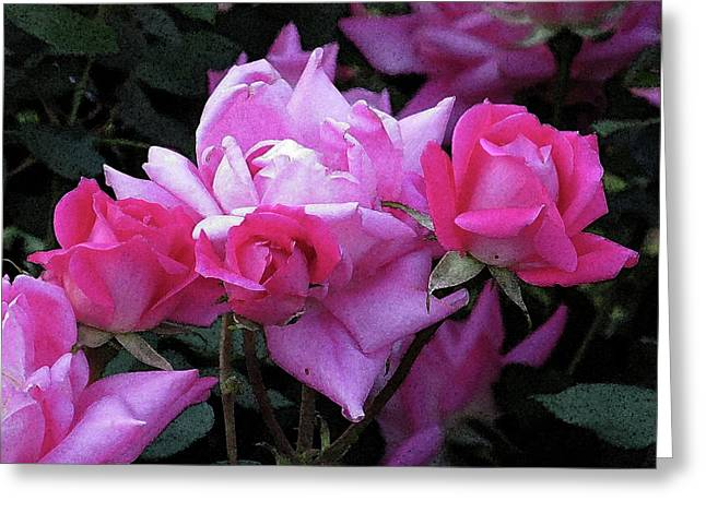Roses Greeting Card by Michele Caporaso