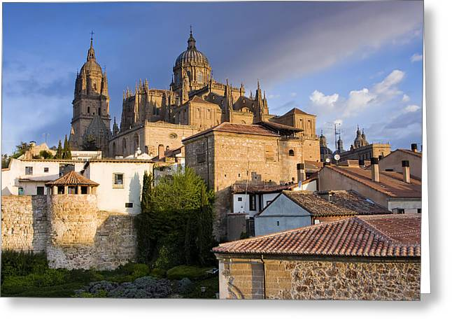 Salamanca Greeting Card by Andre Goncalves