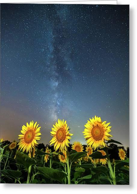 Sunflower Galaxy IIi Greeting Card