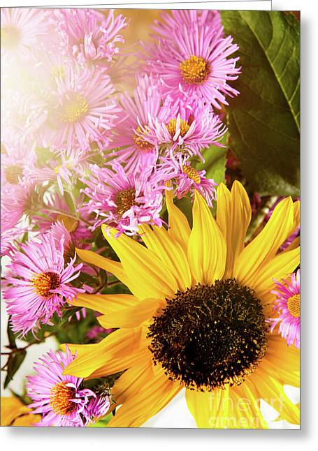 Sunflowers And Asters In A Watering Can Greeting Card by Wolfgang Steiner