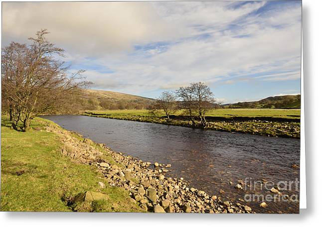 The River Swale Greeting Card by Nichola Denny