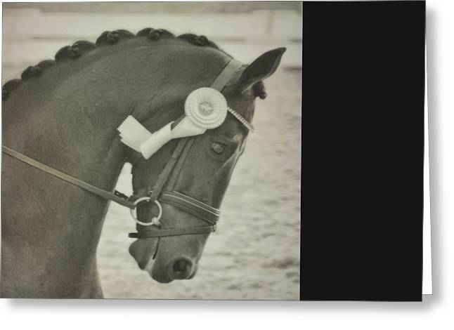 Victory Gallop Greeting Card by JAMART Photography