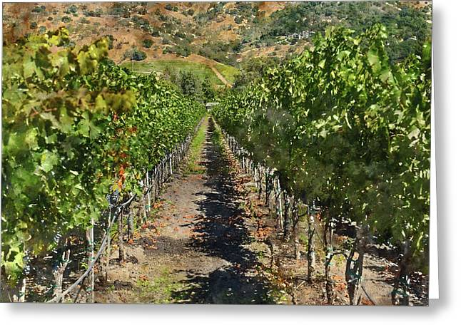 Vineyard In Napa Valley California Greeting Card by Brandon Bourdages
