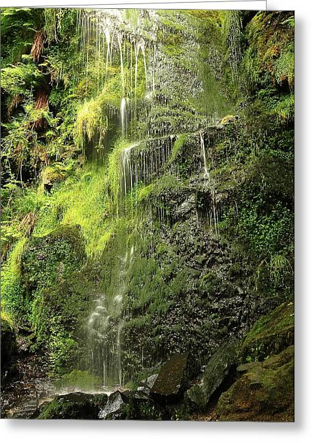Waterfall Greeting Card by Svetlana Sewell