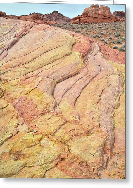 Greeting Card featuring the photograph Waves Of Color In Valley Of Fire by Ray Mathis