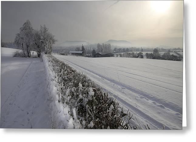 Wintery Landscape Greeting Card