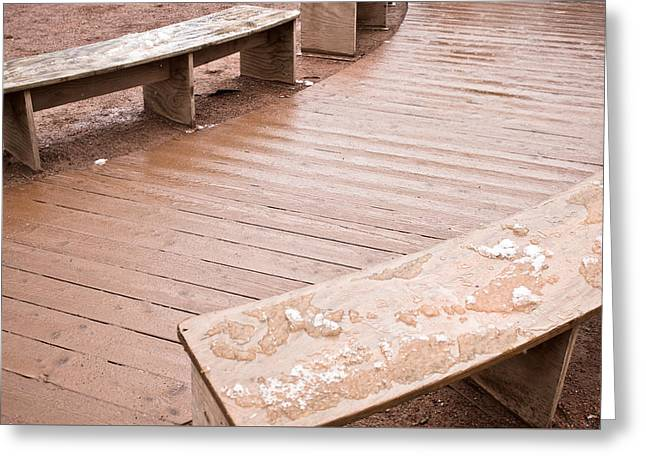 Wooden Benches Greeting Card by Tom Gowanlock