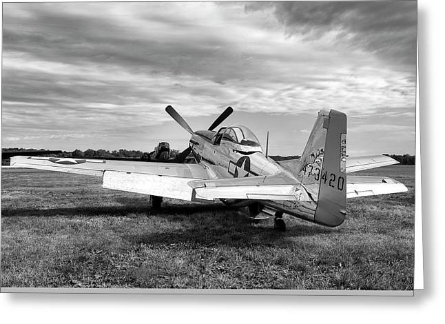 Greeting Card featuring the photograph 51 Shades Of Grey by Peter Chilelli