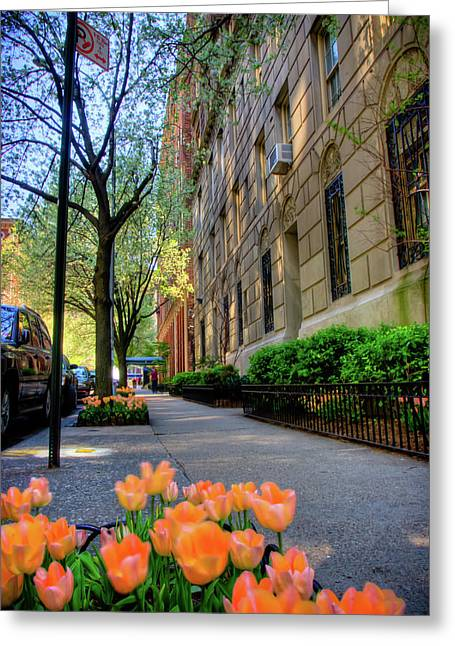 5th Greeting Cards - 5th Avenue Greeting Card by David Hahn