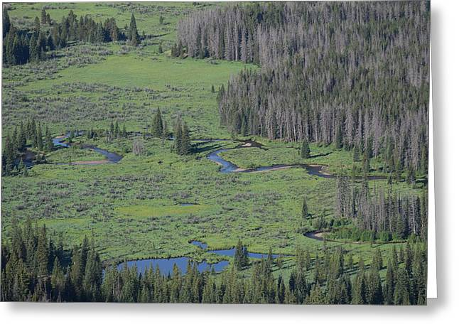 Scenery Rocky Mountain Np Co Greeting Card