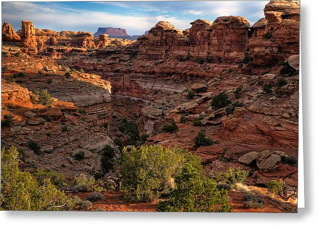 Confluence Greeting Cards - Canyonlands National Park Utah Greeting Card by Utah Images