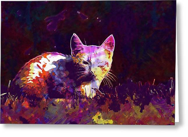 Greeting Card featuring the digital art Cat Eye Injury One Eye Village  by PixBreak Art