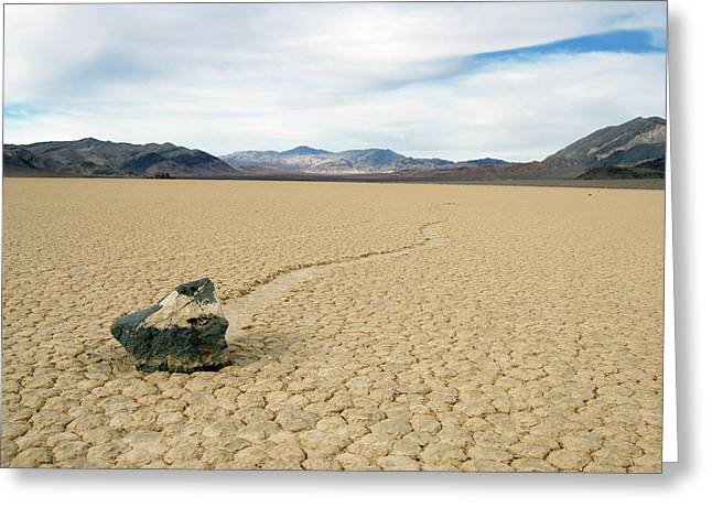 Greeting Card featuring the photograph Death Valley Racetrack by Breck Bartholomew