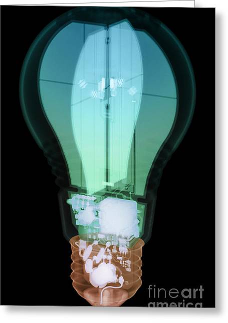 Energy Efficient Led Light, X-ray Greeting Card by Ted Kinsman