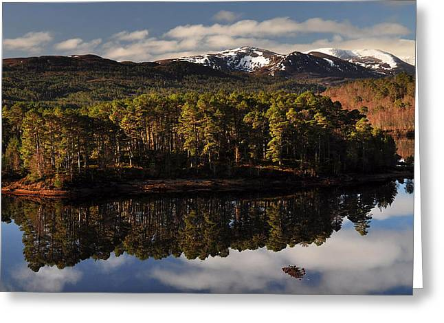 Greeting Card featuring the photograph Glen Affric by Gavin Macrae
