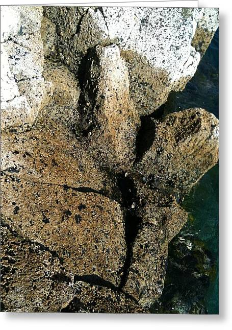 Slavery Greeting Cards - Goree Beach Texture Greeting Card by Fania Simon