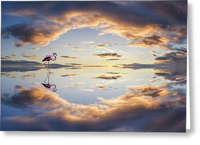 Large Vibrant Panorama Image Of Stormy Sunset Sky With Reflectio Greeting Card by Matthew Gibson