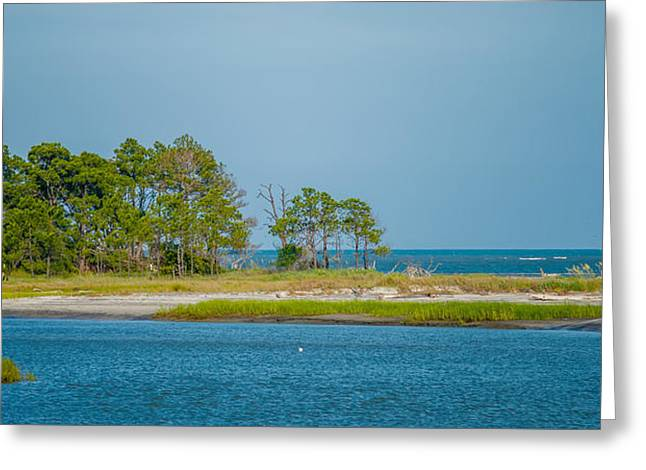 Hunting island state park greeting cards page 3 of 5 fine art nature scenes around hunting island south carolina greeting card m4hsunfo