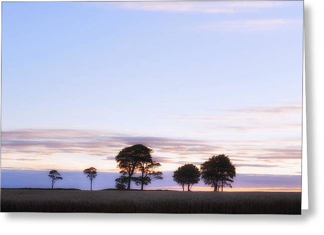 Roundway Hill - England Greeting Card
