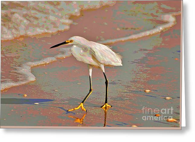 Greeting Card featuring the photograph 6- Snowy Egret by Joseph Keane