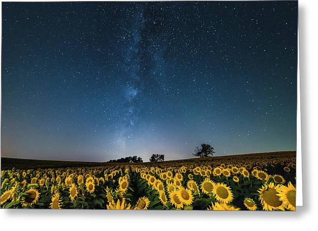 Sunflower Galaxy Greeting Card