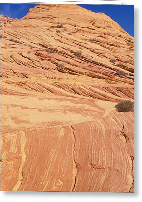 The Wave, Sandstone Formation, Kenab Greeting Card by Panoramic Images