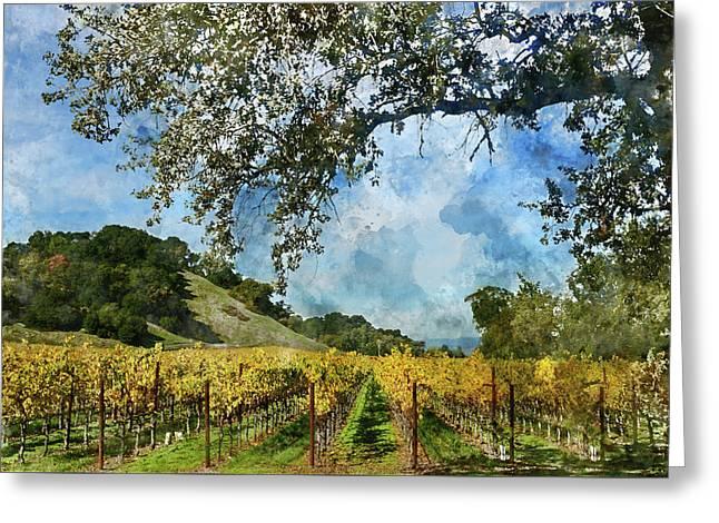Vineyard In Napa Valley California Greeting Card by Brandon Bourdages
