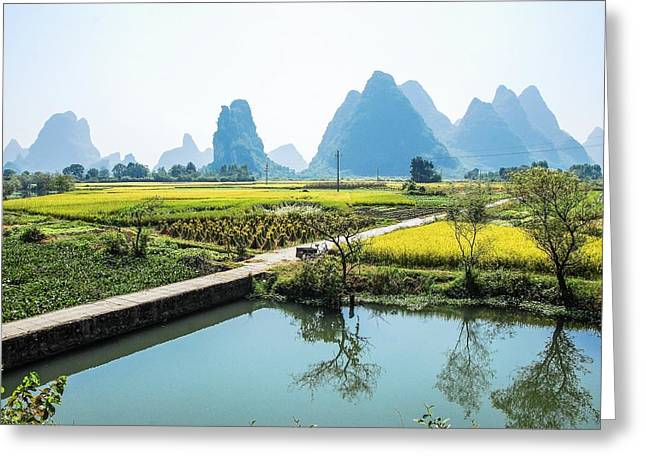 Rice Fields Scenery In Autumn Greeting Card