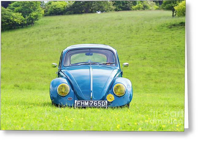 66 Beetle Greeting Card by Tim Gainey