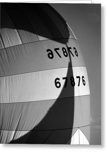 Spinaker Shadow Greeting Card