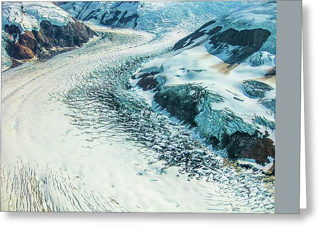 Denali National Park Greeting Card