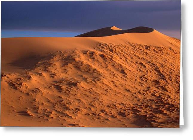 Kelso Dunes Greeting Card by Soli Deo Gloria Wilderness And Wildlife Photography