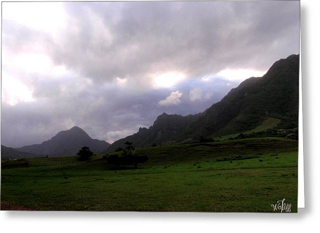 Mountain Valley Greeting Cards - Kualoa Ranch Greeting Card by Thea Wolff