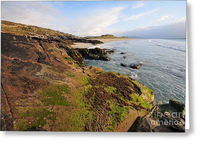 Luskentyre, Isle Of Harris Greeting Card by Nichola Denny