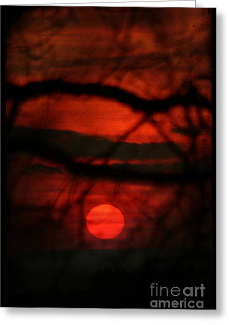 The Sunset Greeting Card by Angel Ciesniarska
