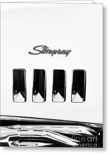 72 Stingray Monochrome  Greeting Card by Tim Gainey