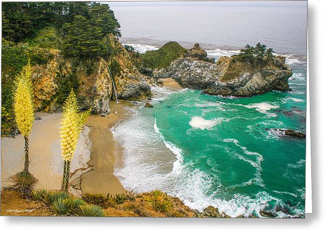 #7842 - Big Sur, California Greeting Card