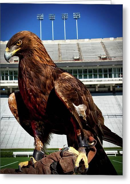 Auburn War Eagle Greeting Card by Mountain Dreams