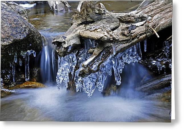 Creek Greeting Card by John Anderson