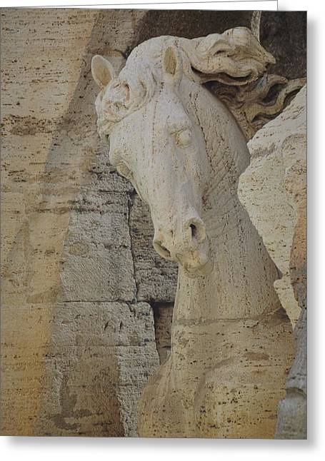 Horse In The Fountain  Greeting Card by JAMART Photography