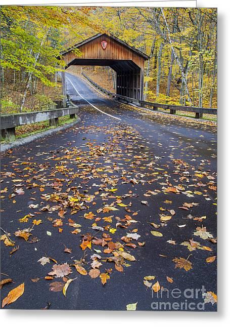 Pierce Stocking Drive In Fall Greeting Card