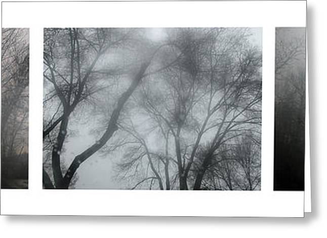 Panoramics Greeting Cards - Storm Trees Greeting Card by Guido Montanes Castillo