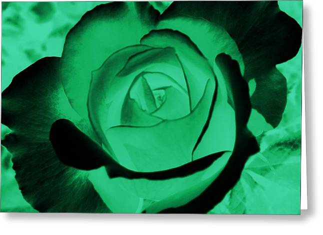 The Green Rose Greeting Card by Belinda Cox