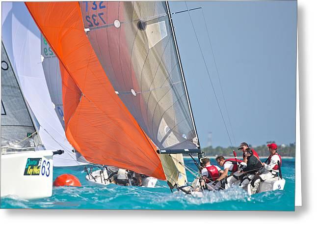 Key West Race Week Greeting Card by Steven Lapkin