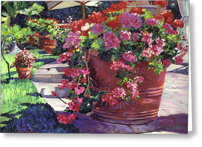 Geranium Color Pot Greeting Card by David Lloyd Glover