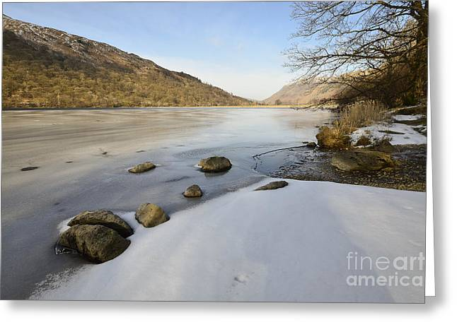 Brothers Water Greeting Card by Nichola Denny