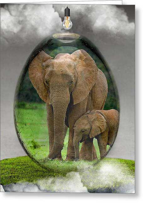 Elephant Art Greeting Card
