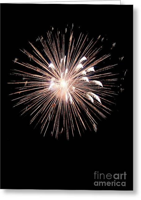 Fireworks Greeting Card by Brent Parks